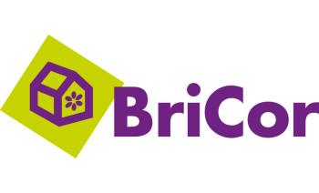Bricor Spain